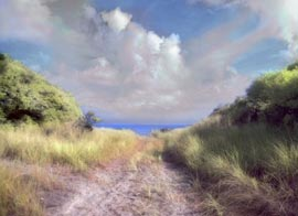 Burma Road Fire Island. Surreal infrared digital photograph.