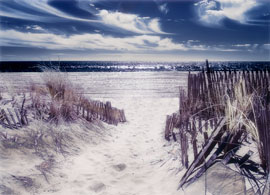 Dune walk to the ocean. Fine art infrared sureal print.